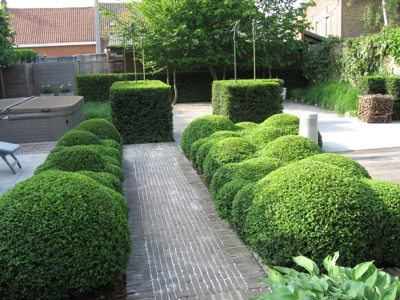 Creatuin de kunst van het cre ren met groen for Franse tuin